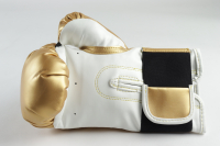 Mike Tyson Signed Everlast Boxing Glove (PSA Hologram) at PristineAuction.com