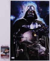 "Greg Horn Signed ""Darth Vader"" 11x17 Lithograph (JSA COA) (See Description) at PristineAuction.com"