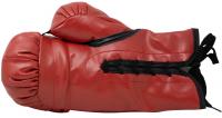Tyson Fury Signed Everlast Boxing Glove (Beckett COA) at PristineAuction.com