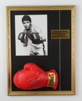 Julio Cesar Chavez Signed 17x22 Custom Framed Boxing Glove Display (PSA COA) (See Description) at PristineAuction.com