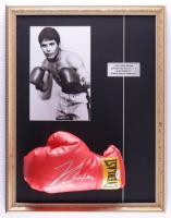 Julio César Chávez Signed 17x22 Custom Framed Everlast Boxing Glove Display (PSA COA) (See Description) at PristineAuction.com