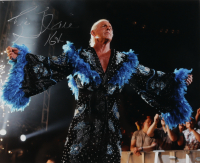 """Ric Flair Signed WWE 16x20 Photo Inscribed """"16x"""" (Schwartz Hologram) at PristineAuction.com"""