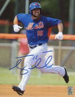 Tim Tebow Signed Mets 8x10 Photo (Tebow COA) at PristineAuction.com