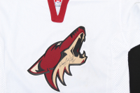 Wayne Gretzky Signed Coyotes Jersey (PSA COA) at PristineAuction.com