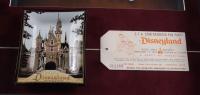 Disneyland 14.5x25.5 Print Display with Vintage Disneyland Party Ticket & Souvenir Ceramic Dish at PristineAuction.com