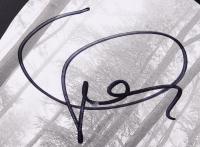 "Taylor Swift Signed 38"" Acoustic Guitar (JSA COA) (See Description) at PristineAuction.com"