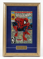 Spider-Man Issue #1 12x17 Custom Framed First Issue Comic Book Display at PristineAuction.com