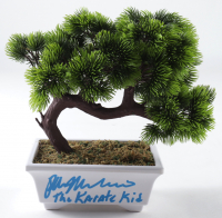 "Ralph Macchio Signed ""The Karate Kid"" Artificial Bonsai Tree Inscribed ""The Karate Kid"" (AutographCOA COA) (See Description) at PristineAuction.com"