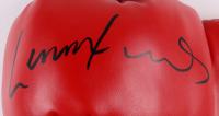 Lennox Lewis Signed Everlast Boxing Glove with Case (JSA Hologram) at PristineAuction.com