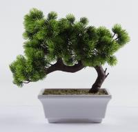"Ralph Macchio Signed ""The Karate Kid"" Artificial Bonsai Tree Inscribed ""The Karate Kid"" (AutographCOA COA) at PristineAuction.com"