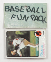 1973 Topps Baseball Card Fun Pack with (10) Cards at PristineAuction.com
