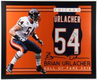 "Brian Urlacher Signed 35x43 Custom Framed Jersey Display Inscribed ""HOF 18"" (Beckett Hologram) (See Description) at PristineAuction.com"