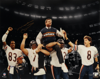 Mike Ditka Signed Bears 16x20 Photo (Schwartz Sports COA) at PristineAuction.com