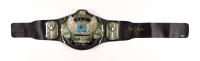 Hulk Hogan Signed WWE Championship Belt (Schwartz Sports COA) at PristineAuction.com