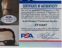 "Kevin Nash Signed ""WWE"" #74 Diesel Funko Pop! Vinyl Figure (PSA COA) at PristineAuction.com"