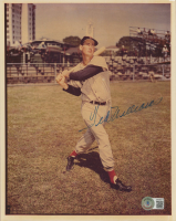 Ted Williams Signed 8x10 Red Sox Photo (Beckett LOA) at PristineAuction.com