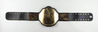 The Undertaker Signed World Heavyweight Wrestling Champion Belt (JSA COA & Fiterman Sports Hologram) (See Description) at PristineAuction.com