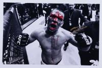 Nate Diaz Signed UFC 11x17 Photo (JSA COA) at PristineAuction.com