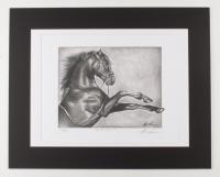 "Anthony Douglas Signed ""Black Stallion"" LE 16x20 Custom Matted Print (PA LOA) at PristineAuction.com"
