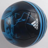 Raul Gonzalez Blanco Signed Real Madrid Logo Soccer Ball (PSA COA) (See Description) at PristineAuction.com