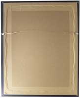 Dale Earnhardt Jr. & Stephen Balok Signed 16x20 Custom Framed Print Display (Fanatics Hologram) at PristineAuction.com