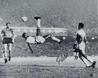 Pele Signed Team Brazil 16x20 Photo (Beckett COA) at PristineAuction.com