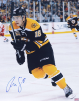 Reilly Smith Signed Bruins 16x20 Photo (YSMS Hologram) at PristineAuction.com