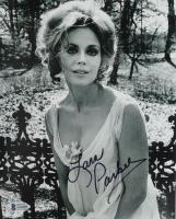 Lara Parker Signed 8x10 Photo (Beckett COA) at PristineAuction.com