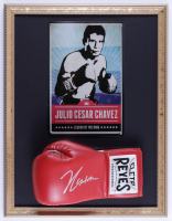 Julio Cesar Chavez Signed 17x22 Custom Framed Boxing Glove Display with Metal Tin Photo (PSA COA) (See Description) at PristineAuction.com