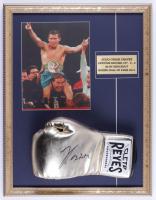 Julio Cesar Chavez Signed 17x22 Custom Framed Boxing Glove Display (PSA COA) at PristineAuction.com