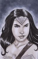 "Tom Hodges - Wonder Woman - Gal Gadot - DC Comics - Signed ORIGINAL 5.5"" x 8.5"" Drawing on Paper (1/1) at PristineAuction.com"