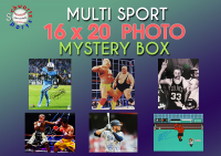 Schwartz Sports Multi Sport Signed 16x20 Photo Mystery Box – Series 9 (Limited to 150) at PristineAuction.com