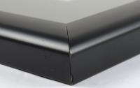 Brandi Rhodes Signed 19x23 Custom Framed Photo Display (JSA COA) (See Description) at PristineAuction.com