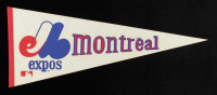 Vintage Expos Pennant at PristineAuction.com