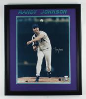 Randy Johnson Signed Diamondbacks 22.5x26.5 Custom Framed Photo (JSA COA) at PristineAuction.com