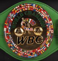 Floyd Mayweather Jr. Signed 19x43 Custom Framed Full-Size Replica WBC World Championship Belt (Beckett Hologram) at PristineAuction.com