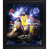 Lebron James Lakers 15x17 Custom Framed Photo at PristineAuction.com