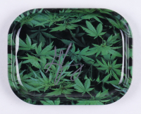 """George Jung Signed """"Blow"""" Tray (Beckett COA) (See Description) at PristineAuction.com"""