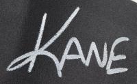 Kane Signed WWE World Heavyweight Champion Belt (JSA COA) at PristineAuction.com