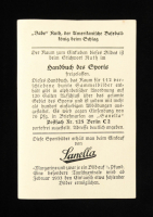 Babe Ruth 1933 Sanella Baseball Card #83 Type 2 at PristineAuction.com