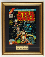 """1977 """"Star Wars: Special Edition"""" Issue #1 Marvel Comic Book 16x20 Custom Framed Display (See Description) at PristineAuction.com"""