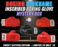 Schwartz Sports - Boxing Nickname Inscribed & Signed Boxing Glove Mystery Box – (Sweet Sixteen Edition - Series 1) (Limited to ONLY 16!!) at PristineAuction.com