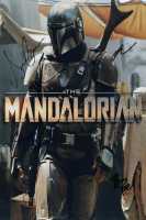 """Star Wars: The Mandalorian"" 12x18 Photo Signed by (5) With Brian Posehn, Bryce Dallas Howard, Gina Carano & Omid Abtahi (Beckett LOA) at PristineAuction.com"