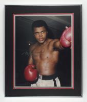 Muhammad Ali Signed 20x24 Custom Framed Photo Display (Beckett LOA) at PristineAuction.com