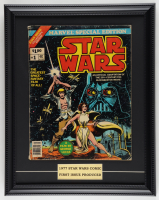 """1977 """"Star Wars: Special Edition"""" Issue #1 Marvel Comic Book 15x19 Custom Framed Display at PristineAuction.com"""