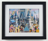 Disneyland Framed 13x15 Souvenir Pin Set at PristineAuction.com