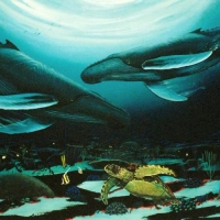 """Wyland """"Humpback Dance"""" Signed Limited Edition 35"""" x 24"""" Giclee on Canvas at PristineAuction.com"""