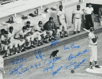 1969 Cubs Black Cat 16x20 Photo Team Signed by (14) with Ernie Banks, Fergie Jenkins, Billy Williams, Don Kessinger, Glenn Beckert, Paul Popovich, Nate Oliver (Schwartz COA) at PristineAuction.com