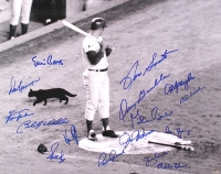 1969 Cubs Black Cat 16x20 Photo Team Signed by (16) with Ron Santo, Ernie Banks, Fergie Jenkins, Billy Williams, Don Kessinger, Glenn Beckert, Paul Popovich (Schwartz COA) at PristineAuction.com