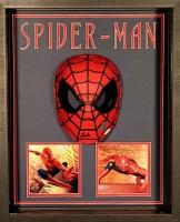 Stan Lee Signed Spider-Man 17x21x4 Custom Framed Shadowbox Mask Display (JSA COA & Lee Hologram)